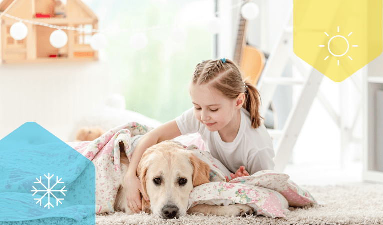 A smiling young girl sitting inside with her dog, wrapping a blanket around her dog